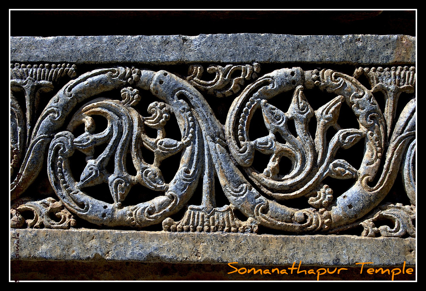 Southern Sojourn – Somnathpur Temple