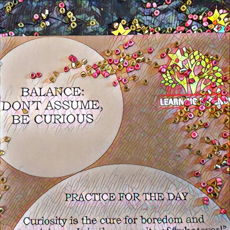 #NaBloPoMo: Day #20: Balance – Dont assume, be curious!