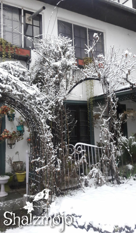 #KashmirTravelDiaries: Chasing a snow dream