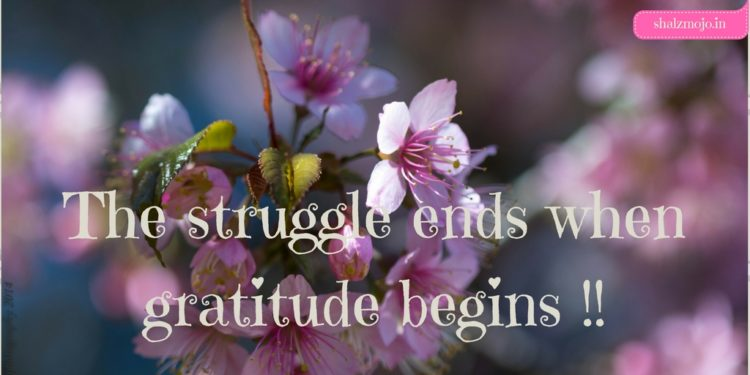 The struggle ends when Gratitude begins!!